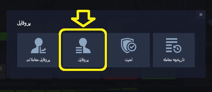 pocket option (پاکت آپشن)